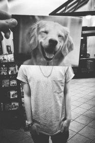 фрилансер vados.dog